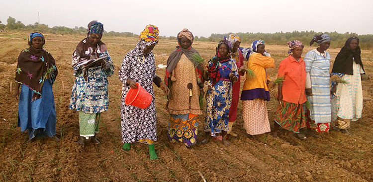 Photo: Members of the women's cooperative use climate-resilient organic compost and biopesticides in their farm. Credit: UN Women