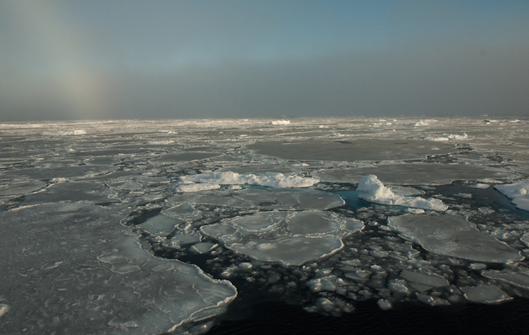 Photo: Small remnants of thicker, multiyear ice float with thinner, seasonal ice in the Beaufort Sea on September 30, 2016. Credit: NASA/GSFC/Alek Petty