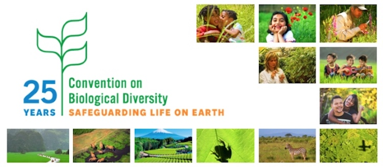 Image credit: UN Convention on Biological Diversity