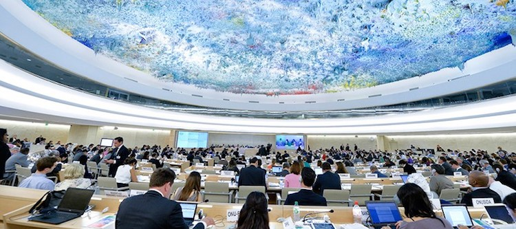 Photo: UN Human Rights Committee. Credit: Australian Human Rights Commission