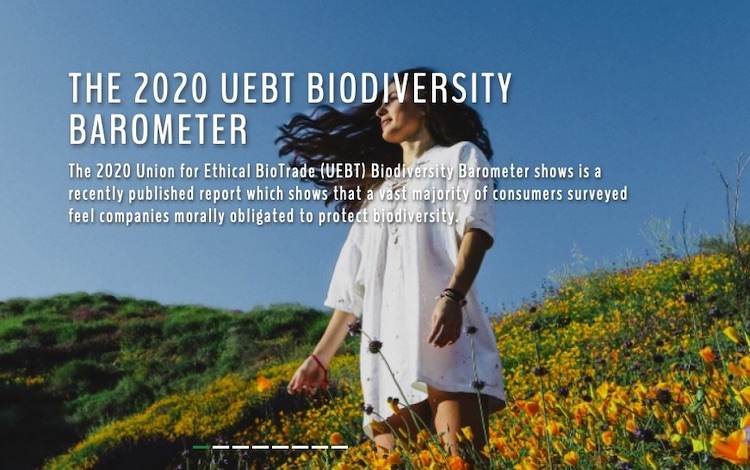 Image credit: Convention on Biological Diversity.