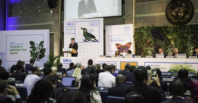 Photo: Delegates gather for the 3rd UN Environment Assembly in Nairobi. Credit: UN Environment.