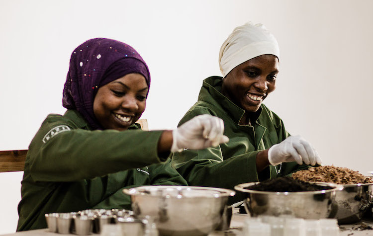 Photo: Women assembling tea. Credit: Kizito Makoye.